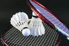 Raquettes de badminton Photos stock
