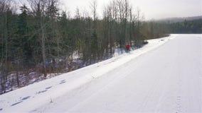 Raquettes de femme le long de bord de la route neigeux au Vermont image libre de droits
