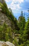 Rarau mountain. A valey from Rarau mountain. The Rarau Mountains (in Romanian Muntii Rarau) are located in northem Romania Stock Images