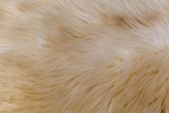 Rare breed sheepskin rugs fleece details view from top. Natural, genuine, rare breed sheepskin rugs fleece details view from top. Grey texture shows different Royalty Free Stock Images