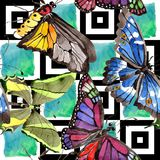 Rare butterflies wild insect in a watercolor style. Seamless background pattern. Fabric wallpaper print texture. royalty free illustration