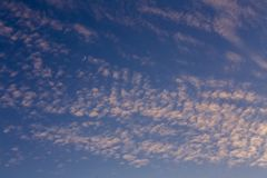 Clouds and the moon on a blue sky. Rare cirrus clouds against a blue sky Stock Photo