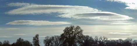 Rare lenticular stratocumulus clouds crossing winter sky. With trees silhouetted against it stock images