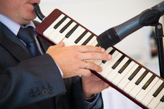 Rare Musical Instrument. Royalty Free Stock Photography