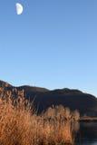 The rare phenomenon of the frozen bogs of Lake Iseo - Brescia - Royalty Free Stock Photo