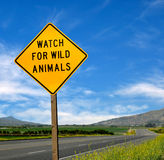 Rare Road Sign Royalty Free Stock Images