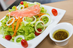 Rare salmon salad. Rare salmon and vegetable salad on white dish with sauce Royalty Free Stock Images