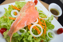 Rare salmon salad. Rare salmon and vegetable salad on white dish with sauce Stock Images