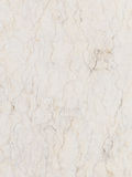 Rare variety of white marble Stock Images