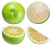 Raring grön grapefrukt som isoleras på vit bakgrund Fotografering för Bildbyråer