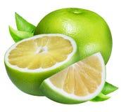 Raring grön grapefrukt som isoleras på vit bakgrund Arkivbild