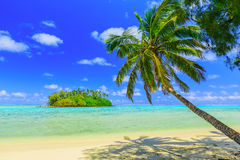 Rarotonga, islas de cocinero Fotos de archivo