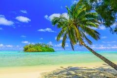 Rarotonga kocköar Arkivfoton