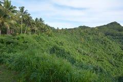 Rarotonga mountain view cook islands Stock Image