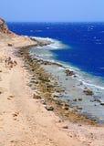 Ras Abu Galum, Egipto Imagens de Stock