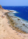 Ras Abu Galum, Egypte Images stock