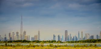 Ras Al Khor Wildlife Sanctuary Arkivfoto