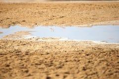 Ras Mohammad National parkerar Royaltyfria Bilder