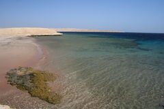Ras Mohammed. National Park, Sinai, Egypt royalty free stock photos