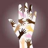 ras- olika händer Royaltyfria Bilder