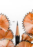Rasatura della matita Immagine Stock