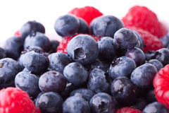 Rasberries and blueberries Royalty Free Stock Photo