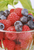 Rasberries and blueberries Stock Photo