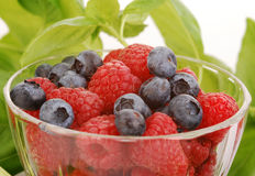 Rasberries and blueberries Royalty Free Stock Photos