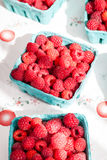Rasberries Stock Photography