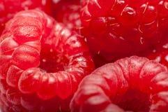 Rasberries Stock Photo