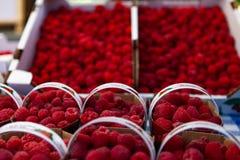 Rasberries voor verkoop bij de markt stock fotografie