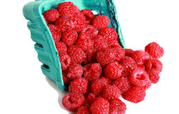Rasberry Royalty Free Stock Images