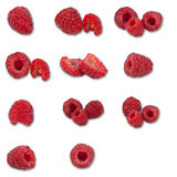 Rasberry collection. Different isolated pictures and angles of rasberrys in just one high resolution collage (more than 55 MP royalty free stock photos