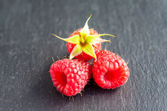 Rasberry. Fresh rasberry on black stone background. Natural food Stock Photo