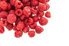 Rasberry fruit Royalty Free Stock Image