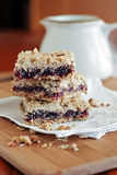 Rasberry Oatmeal Crumb Bars Stock Photography