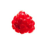 Rasberry. Vibrant red rasberry isolated on white background Royalty Free Stock Image