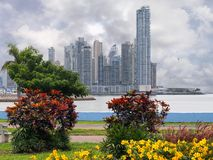 Rascacielos con las plantas y el cielo tempestuoso Imágenes de archivo libres de regalías