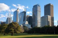 Rascacielos de Sydney de jardines botánicos reales Imagen de archivo libre de regalías