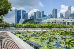 Rascacielos y lillies de Singapur Foto de archivo libre de regalías