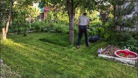 Rasen, der im Vorstadtgebiet mäht stock footage