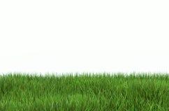 Rasen des grünen Grases mit einem Kopienraum, Illustration 3D Lizenzfreie Stockfotos