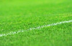Rasen-Fußballplatz Stockbild