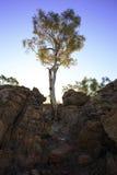 Rasen-Hügel-Nationalpark 1 Lizenzfreie Stockfotos