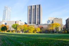 Rasen im Central Park durch die obere Ostseite in der 100. Straße Stockfoto
