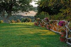 Rasen mit Blumen auf Zaun lizenzfreies stockbild