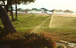 Rasen und Bewässerung Lizenzfreie Stockfotos