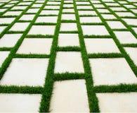 Rasen und rustikale pflasternbeschaffenheit Stockbild