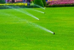Rasenberieselungsanlage, die Wasser über grünem Gras kastriert Bewässerungssystem lizenzfreie stockfotografie