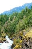 Rasende Stromabflüsse in der Elwha-Wasserscheide stockfotos